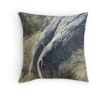 Buttock Boulder Bell's Rapids  Throw Pillow