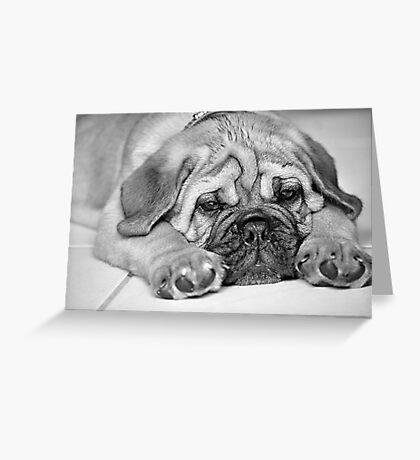 My Hugo Greeting Card