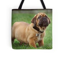 Pure Puppy Innocence Tote Bag