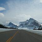 Winter road   by zumi