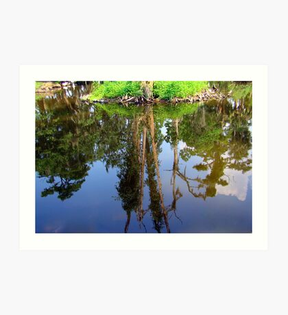 Reflection in City Park Lagoon Art Print