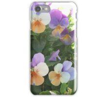 Pretty Pansies iPhone Case/Skin