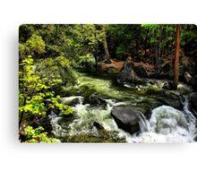 Nature's Display Canvas Print