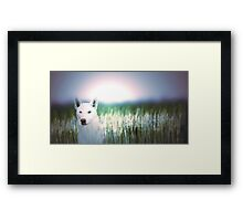 White wolf 17k Framed Print