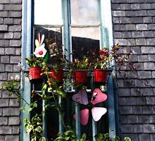 Creative Window Display by Marilyn Harris