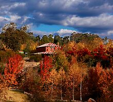 Autumn Colours in Beechworth by Jenna Florescu