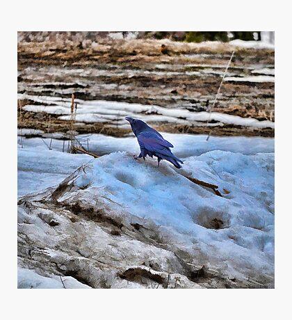 Raven's Mountain Photographic Print