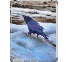 Raven's Mountain iPad Case/Skin