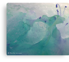 Beauty in the ice Canvas Print