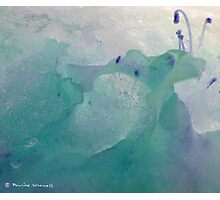 Beauty in the ice Photographic Print