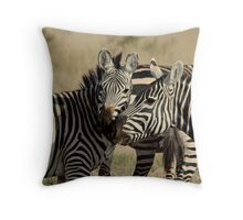 Out of Africa - Stripey Affection Throw Pillow