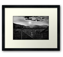 Vineyard Sunset - Trento, Italy Framed Print