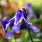 Purple Bells in the Garden by William Martin