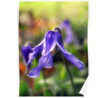 Purple Bells in the Garden Poster
