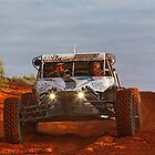 Car 119 - Team Rhodes - Finke 2011 by Centralian Images