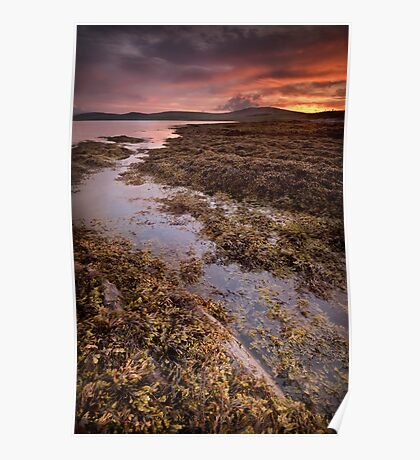 Smoogro Sunset - Orkney Poster