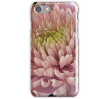 Pink Chrysanthemum iPhone Case/Skin