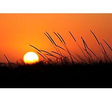Sunset 8188 Photographic Print