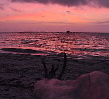 Sunrise, Boca Grande, Florida, USA, As Is by Kim McClain Gregal