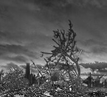 After The Fallout by Scott Evers