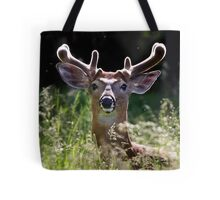 He wore Velvet - White-tailed Deer Tote Bag