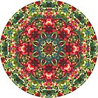 Holly Berries Mandala by Judi FitzPatrick