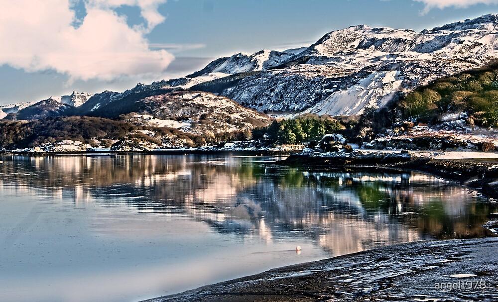 Morfa Mawddach North Wales by angel1978