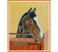 Sassanian  Race horse and Sire Photographic Print