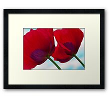 Big Red Poppies Framed Print