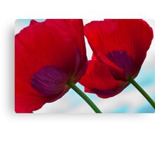 Big Red Poppies Canvas Print
