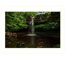 Summerhill Force Art Print