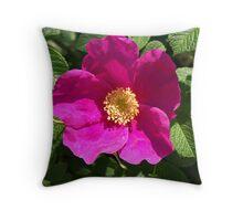 Beach Rose - Rosa Rugosa Throw Pillow