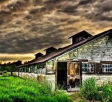 Abandoned Dairy Farm  by BobbiFox