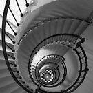 Downward Spiral by Michael Damanski