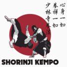 Shorinji Kempo by Steve Harvey