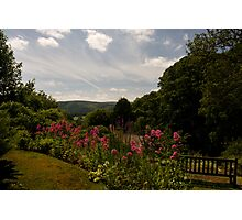 Selworthy Rest and Tranquility, Exmoor Photographic Print