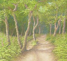 Path Through the Trees, Leith Hill, Surrey by Fiona Cross