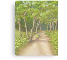 Path Through the Trees, Leith Hill, Surrey Canvas Print