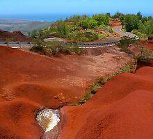 Haleakala, Maui, HAWAII by Atanas Bozhikov NASKO