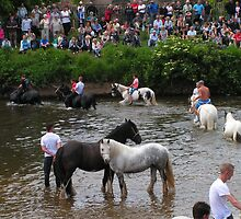 Appleby Horsefair by Kat Simmons