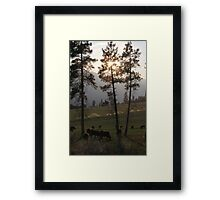 All's Quiet on the Ranch Framed Print