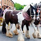 Apple-by Horse fair 2011 by Elaine123