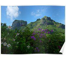 BoraBora - Floral Display Poster