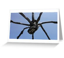 Spider Sack Greeting Card
