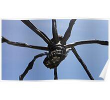 Spider Sack Poster
