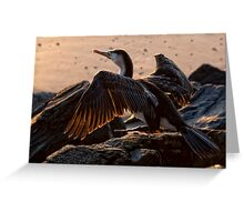 Cleared for Take-Off Greeting Card