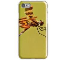 Halloween Pennant Dragonfly iPhone Case/Skin