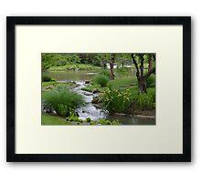 Chinese Garden Stream Framed Print