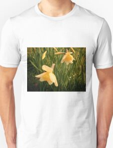 Spring, Well Hall Pleasaunce T-Shirt