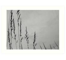 Wheat Stalks Art Print